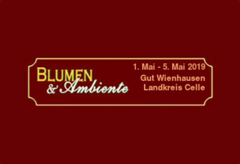 Blumen&Ambiente_Wienhausen_2019_Grünzimmer_Strandkörbe_Sonneninseln